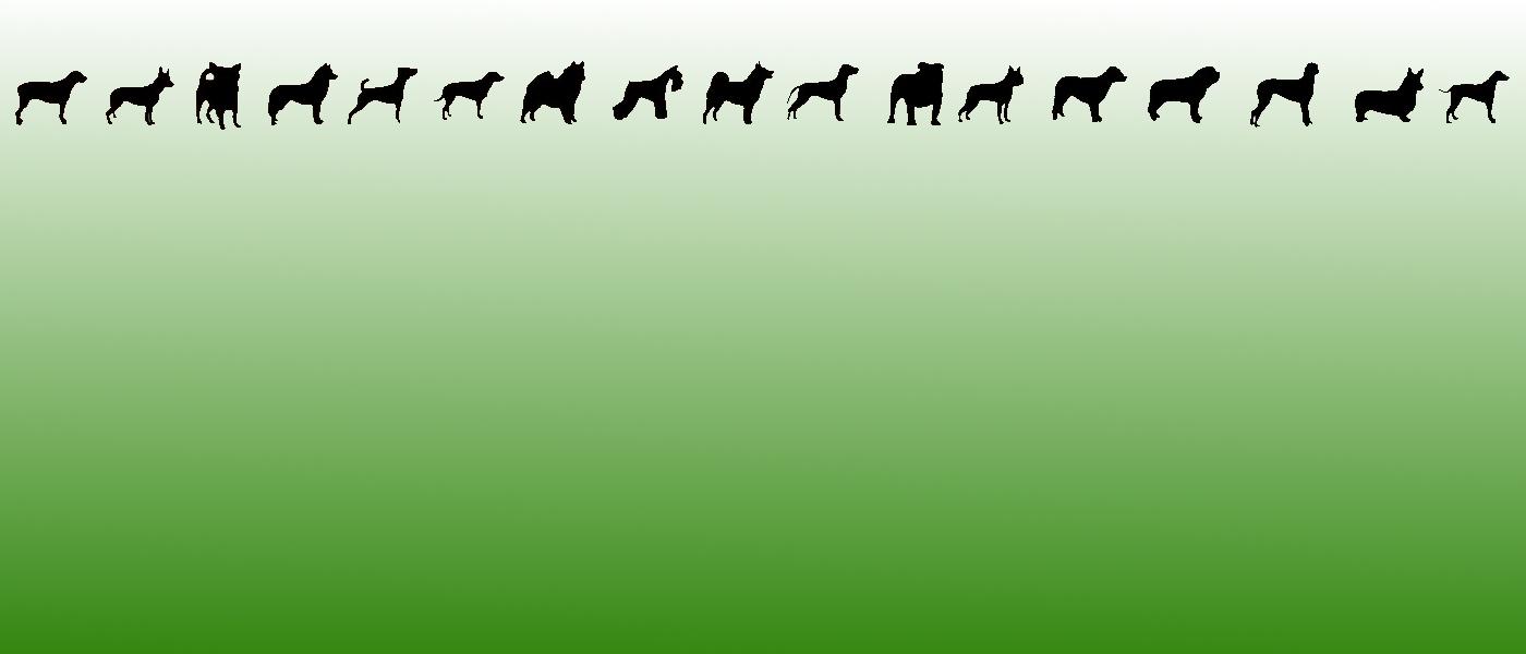 Bild mit allen Hunderassen, welche innerhalb der Ortsgruppe Ettmannsdorf herzlich willkommen sind. Wir bilden alle Hunderassen aus.